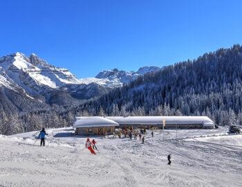 snowbar19